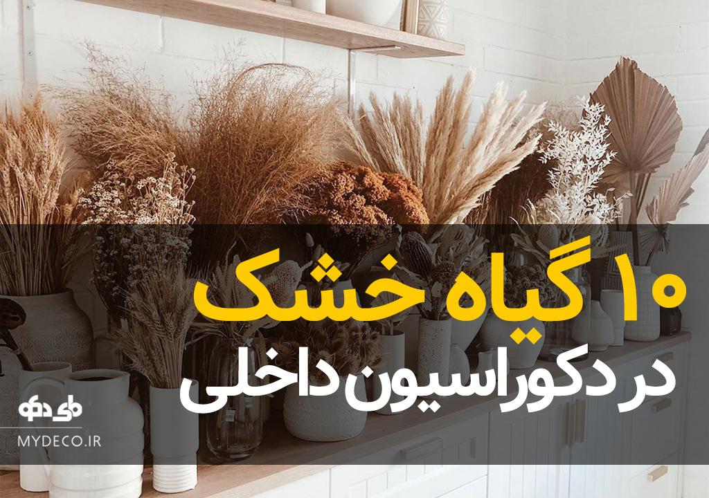 10 گیاه خشک در دکوراسیون داخلی