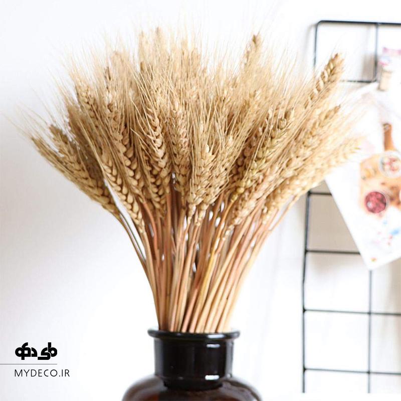 گندم خشک در دکوراسیون